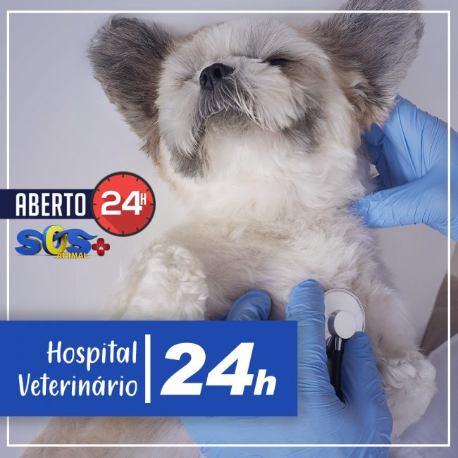 Hospital 24h